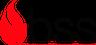 BSS-S GmbH Logo